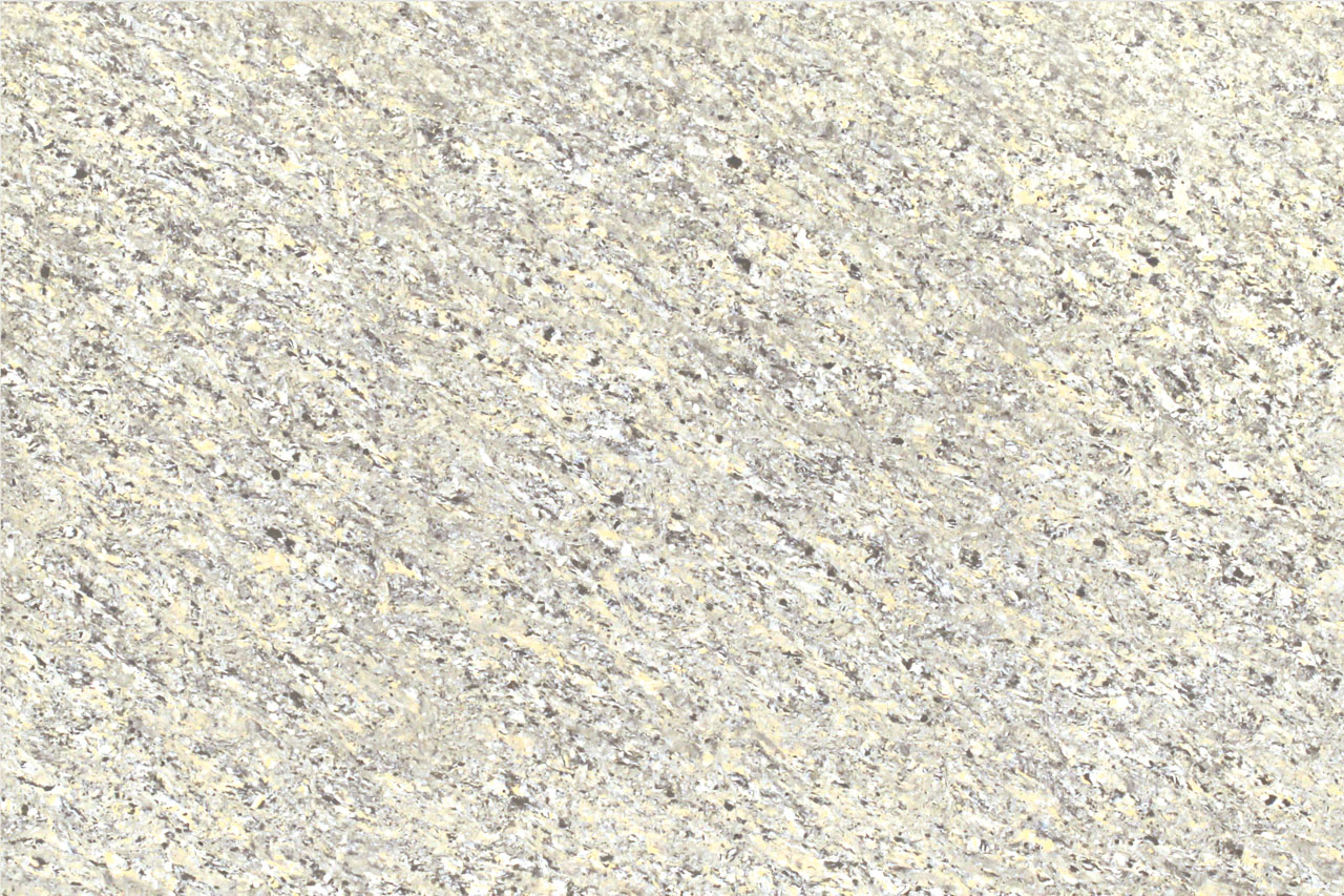 SPECTRA GOLDEN GREY
