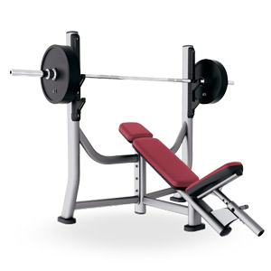 Incline Gym Bench