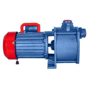 Shallow Well Pump