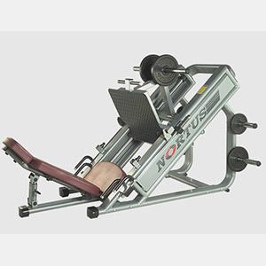 Leg Press - Linear
