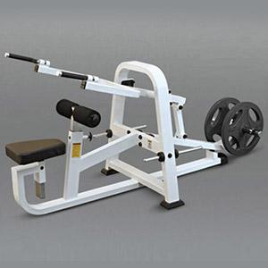 Triceps Push Down