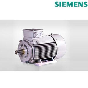 Siemens IE2 Motors