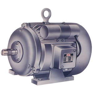 Standard Electric Single Phase Motors