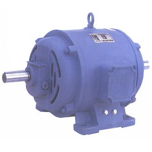 Lift Duty Machine Motor
