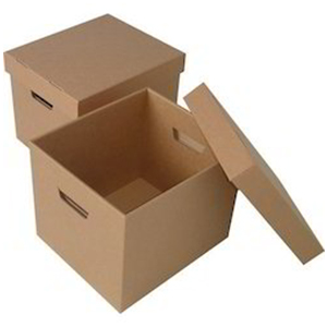 Corrugated Box-2 50x250