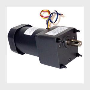 40 Watt AC Induction Gear Motor