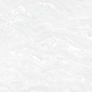 Octagon White