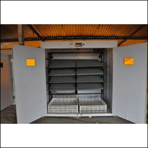 Industrial Incubator Or Hatching of 4848 eggs capacity