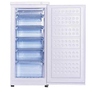 Upright Showcase Freezers