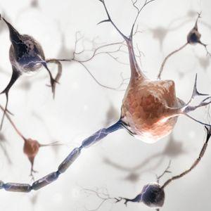 Tranquilisers / Neuro