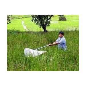 Agricultural Organic Pesticide