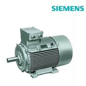 Feed Water Pump Motor