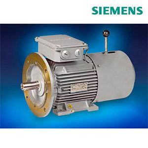 Siemens Brake Motors