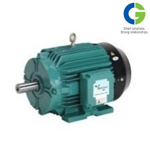 Boiler Feed Water Pump Motor
