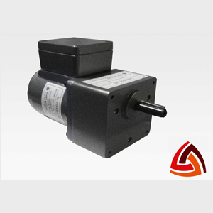25 Watt Induction Gear Motor