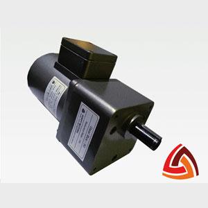 90 Watt Induction Motor