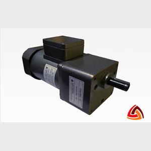 180 Watt Induction Motor F