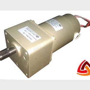 40 Watt PMDC Gear Motor