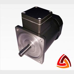 90 Watt Round Induction Motor