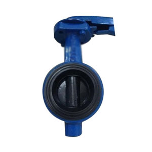 CI Water Butterfly Valve