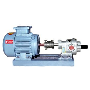 Electric Motor With CI Rotary Oil Gear Pump