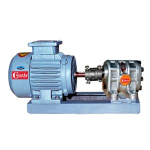 Electric Motor With Eicher Tractor Pump
