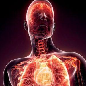 Analgesics Anti Inflammatory