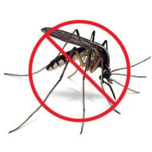Anti-Malarial