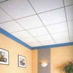 Roofing & Ceiling Panels