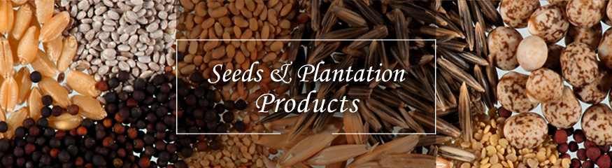 Seeds & Plantation Products